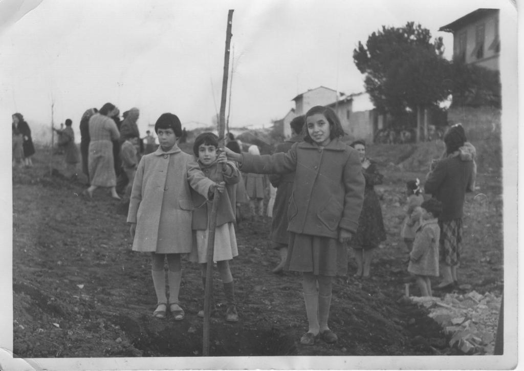 Isolotto festa alberi 1954_NOV