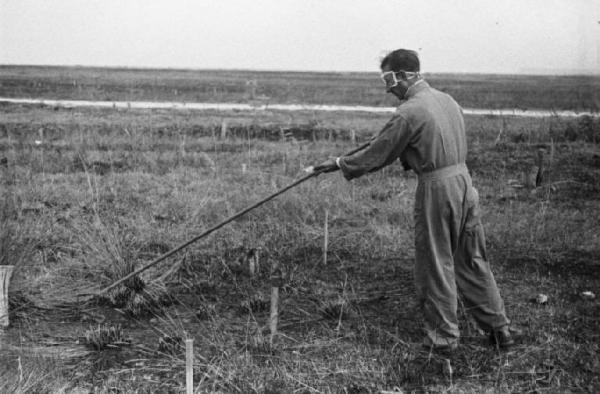 Autunno 1946: rastrellatore civile italiano della B.C.M. bonifica un terreno nei dintorni di Pisa