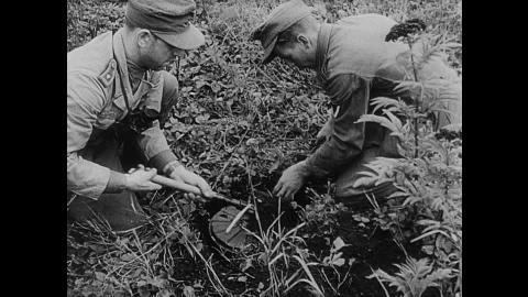 """Genieri nazisti seppelliscono una mina anticarro di tipo Tellermine 42 (""""mina a piatto"""")"""