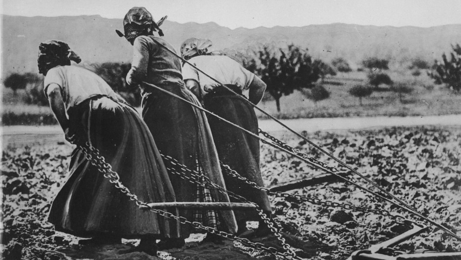 Contadine a lavoro nei campi negli anni della Grande guerra