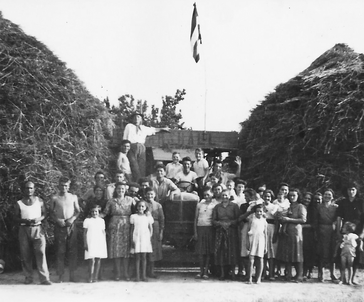 la bandiera della pace issata in occasione di uno sciopero della trebbiatura nel 1953 alla fattoria Cantini nel pistoiese